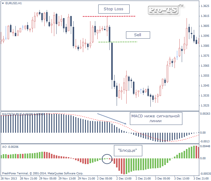strategia forex macd forester