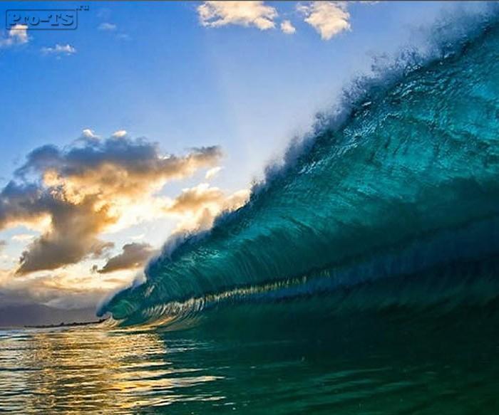 Что такое волна на форексе